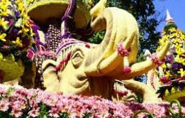Festival en Chiang Mai